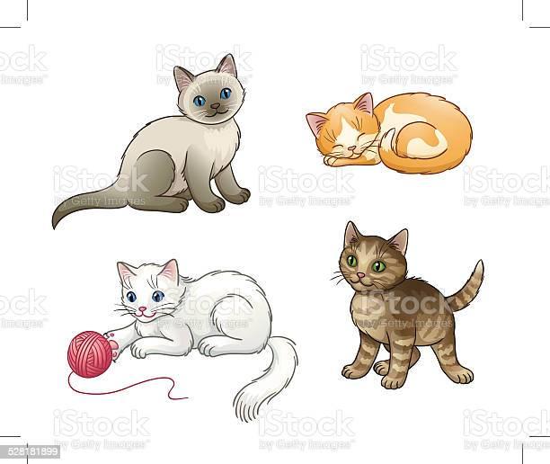 Set of pretty vector kittens vector id528181899?b=1&k=6&m=528181899&s=612x612&h=hpjxvkcoqkoicdpj u q3m6dqflu gsrvvagrtkwz e=