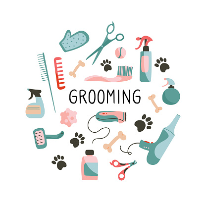 Set of  Products for grooming, pet shop. Combs, scissors, clipper, nippers, sprays, bones, care products. Objects isolated on white background, cartoon style. Vector illustration.