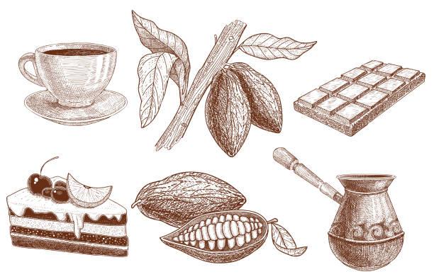 eine reihe von produkten aus kakaobohnen: kuchen, schokolade, kakao-bohnen in einen schnitt und einen truthahn für das brauen ein getränk sowie eine tasse und eine kugel für kakao-pulver und bohnen wachsen. - tortenriegel stock-grafiken, -clipart, -cartoons und -symbole