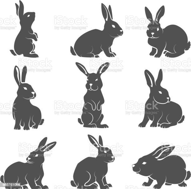 Set of rabbit icons isolated on white background vector id665761068?b=1&k=6&m=665761068&s=612x612&h=e smt4tpyonsgrlyun1x8f73phix0h3zz0cx837nn4w=