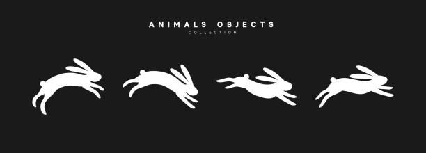 satz von kaninchen-illustration. sammlung weißer hase isoliert auf schwarzem hintergrund - kaninchen stock-grafiken, -clipart, -cartoons und -symbole