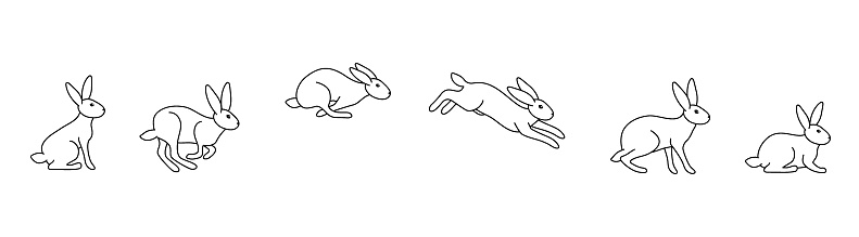 A set of rabbit jump phases. The hare sits, prepares to jump, jumps, lands. Black outline on a white background. Vector illustration in doodle style
