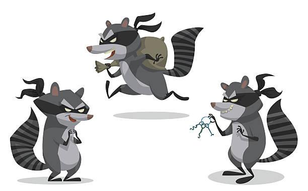 Set of raccoons bandits Ai EPS 10 raccoon stock illustrations