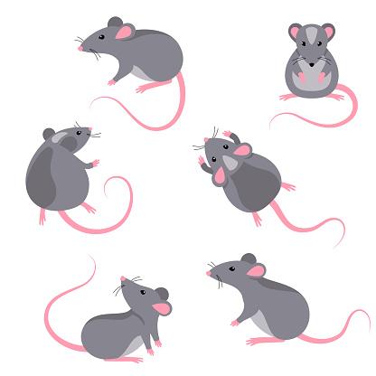 Set of rats characters