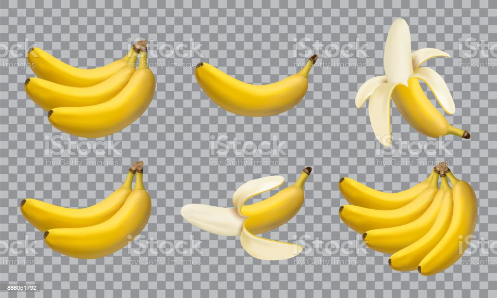 Set of realistic illustration bananas, 3d vector icons vector art illustration