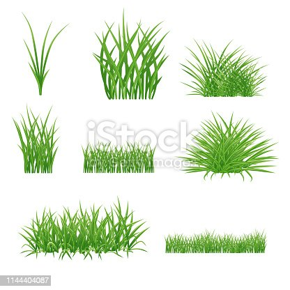 set of realistic summer green grass elements. lawn and bunches. isolated on white background