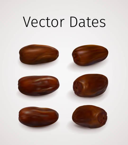 Set of Realistic Vector Dates Fruit vector art illustration