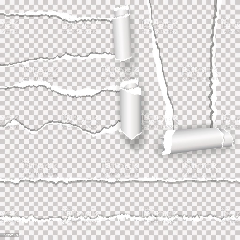 Set of realistic vector torn paper with ripped edges with space for your text. vector art illustration