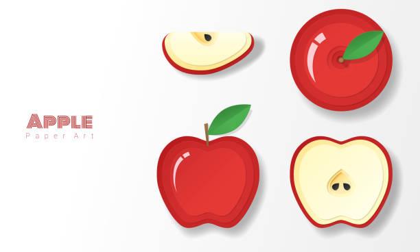 satz von roten äpfeln in papier-art-stil, vektor, abbildung - apple stock-grafiken, -clipart, -cartoons und -symbole