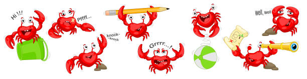 set of red crabs in different poses and emotions. illustration of crabs on white background. - treasure map backgrounds stock illustrations