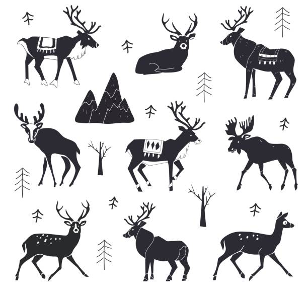 bildbanksillustrationer, clip art samt tecknat material och ikoner med uppsättning rensiluetter. vektor illustration isolerad på en vit bakgrund. skogsdjur. jul djur. illustration av älg. - älg sverige