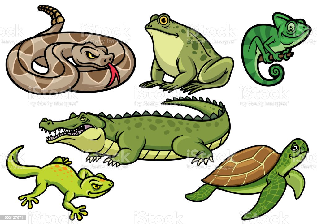 set of reptile cartoon illustration vector art illustration