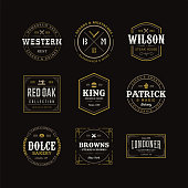 Vector Retro Vintage Emblem or Logotype Design Elements Business Sign Hipster Logo Identity Template