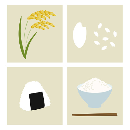 Set Of Rice And Rice Ball Stock Illustration - Download Image Now