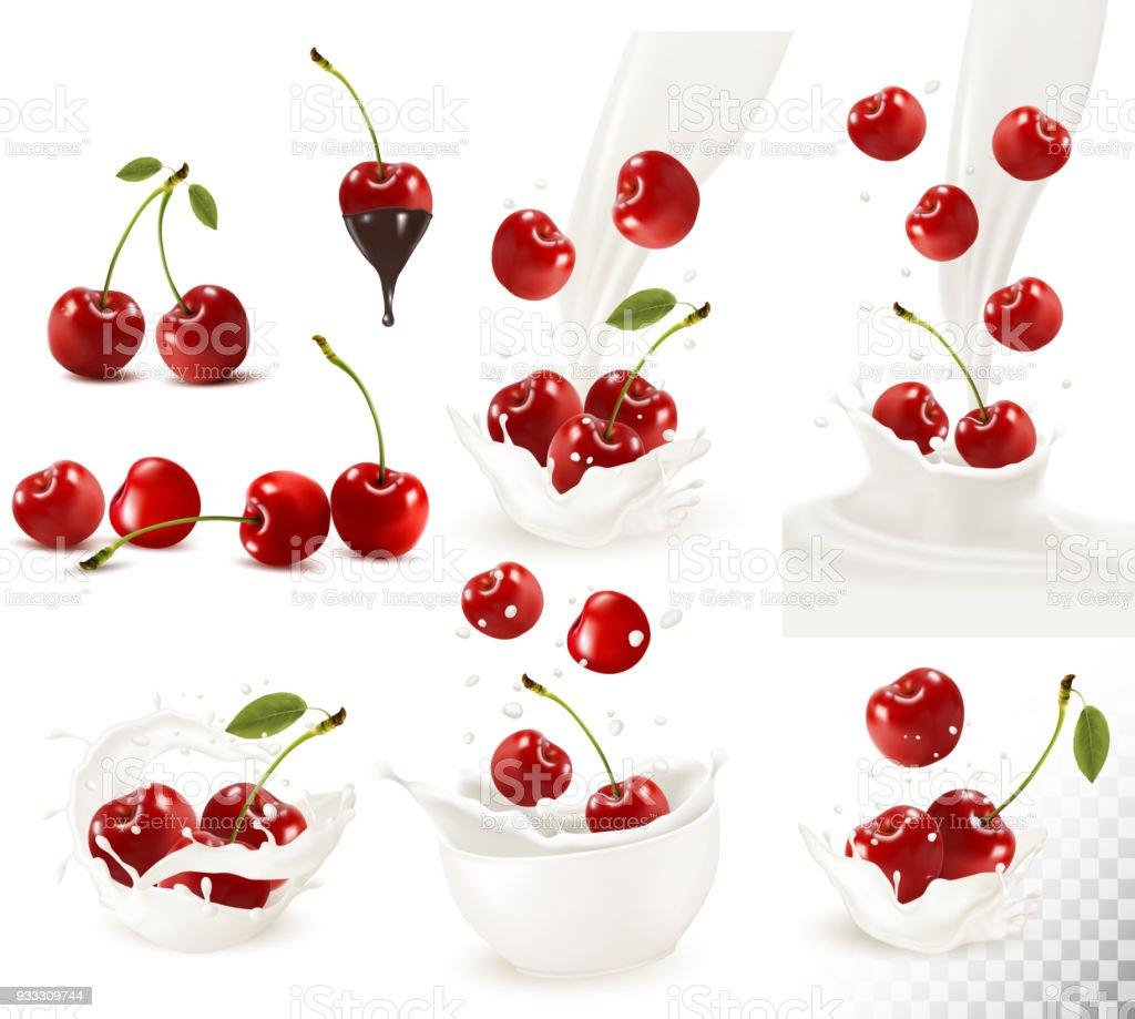 630488b889 Set of ripe sweet cherries and splash of milk. Vector. - Illustration .