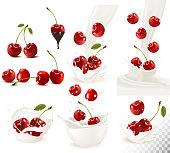 Set of ripe sweet cherries and splash of milk. Vector.