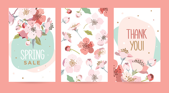 A set of romantic cards with blooming cherry.