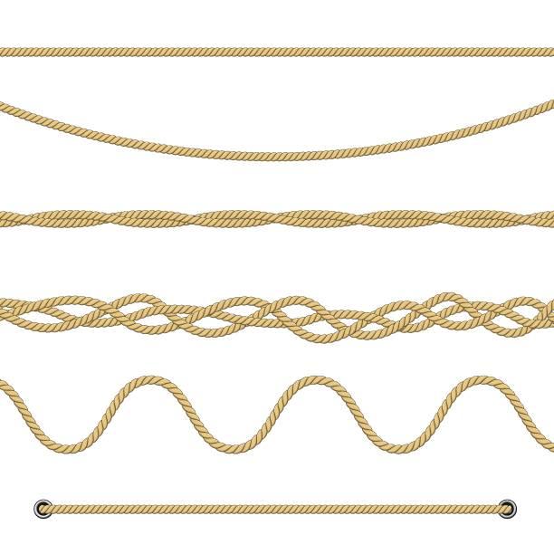 stockillustraties, clipart, cartoons en iconen met set van touwen - touw