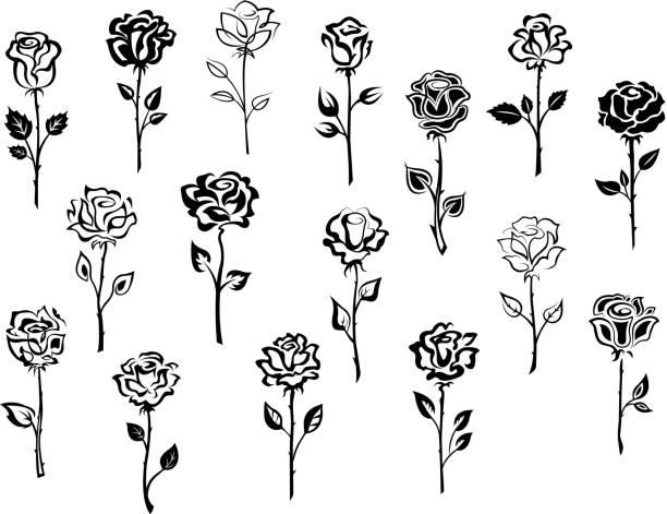 set of rose icons - plant stem stock illustrations