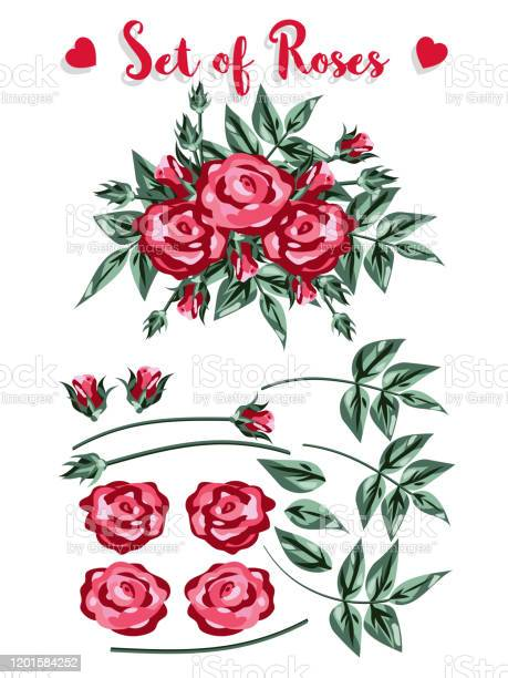 Set of roses red rose and buds green leaves on white background and vector id1201584252?b=1&k=6&m=1201584252&s=612x612&h=aumqv yaobas 33ykmhum14gv2w7lmrprtbkwazdrtu=