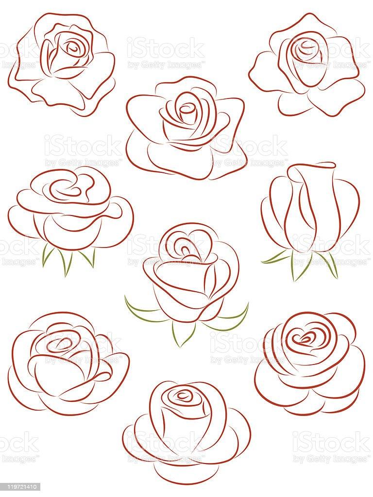 Set of roses. Vector illustration. royalty-free stock vector art