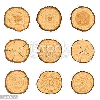 Set of round cross-sections of a tree with a different ring pattern isolated on a white background. Vector modern illustration