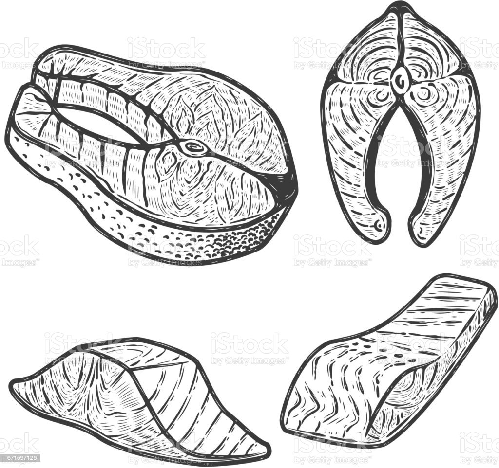 Set of salmon meat pieces isolated on white background. Design element for menu, label, emblem, sign, poster. Vector illustration. vector art illustration