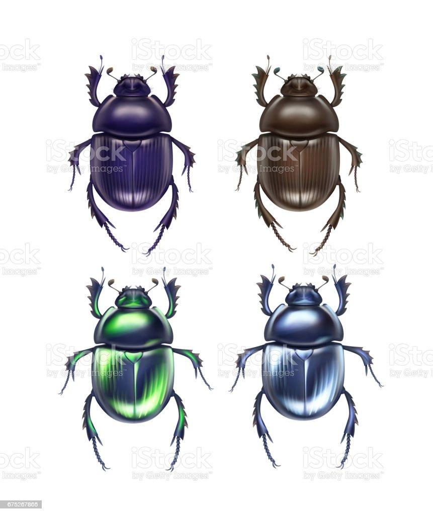 Set of scarab beetles vector art illustration