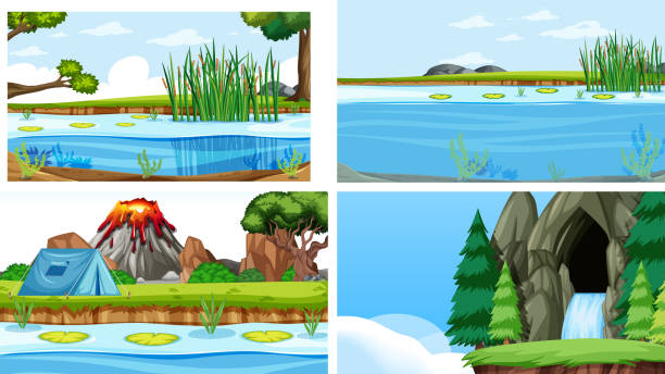 set of scenes in nature setting - pond stock illustrations