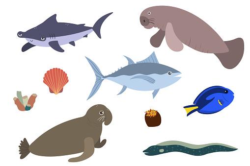 Set of sea animals - hummerhead shark tuna sea elephant surgeonfish manatees. Undersea world habitants print.