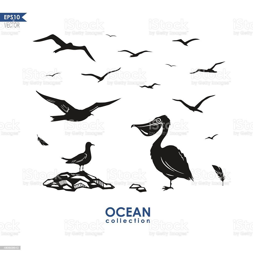 set of sea birds vector art illustration