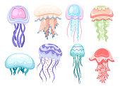 Jellyfish colorful illustration in watercolor and trace into vector