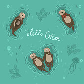 Set of sea otters swimming on their backs