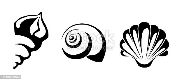 Vector black silhouettes of sea shells isolated on a white background.