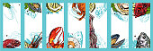 Set of cards with seafood on white background. Vector paper illustration.