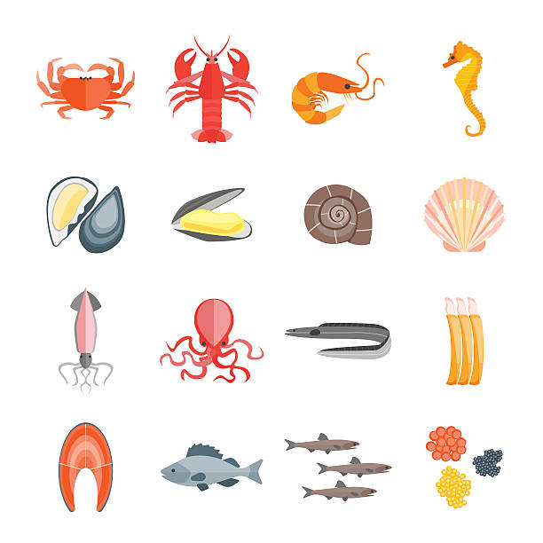 set of seafood. vector - seafood stock illustrations, clip art, cartoons, & icons