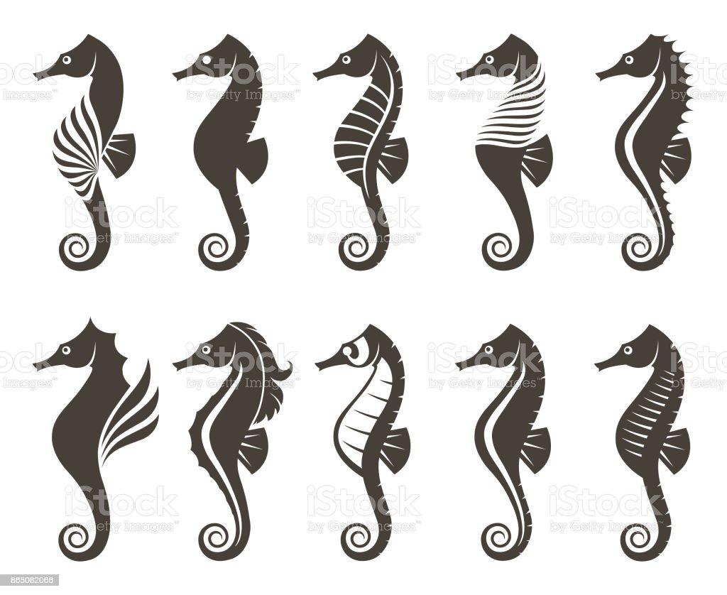 Satz Von Seepferdchen Stock Vektor Art und mehr Bilder von Aquarium ...