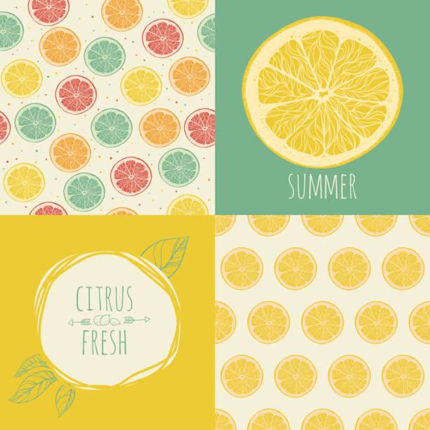 Set of seamless backgrounds. Slices of citrus fruit. Set of seamless backgrounds. Slices of citrus fruit. Vector illustration citrus fruit stock illustrations