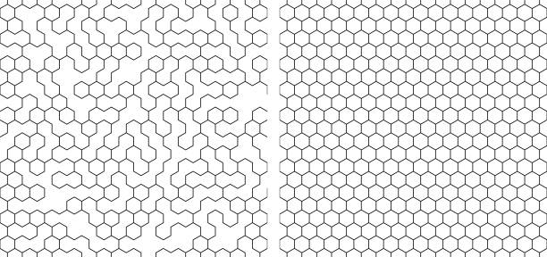 set of  seamless contour  hexagon background set of  seamless contour  hexagon background hexagon stock illustrations