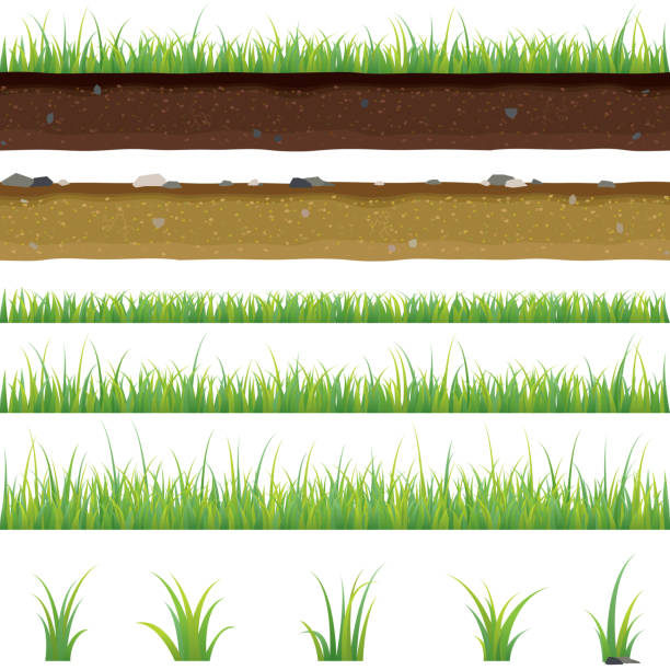 set of seamless horizontal pattern with grass and soil - grass stock illustrations