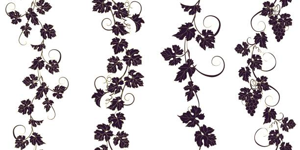 set of seamless ornaments with vines of grapes. - vine stock illustrations, clip art, cartoons, & icons