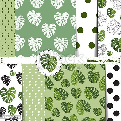 Set  of seamless pattern with large monstera leaves on green and white background. Hand drawn sketch. Monochrome, colored and inverted objects. Vector illustration.
