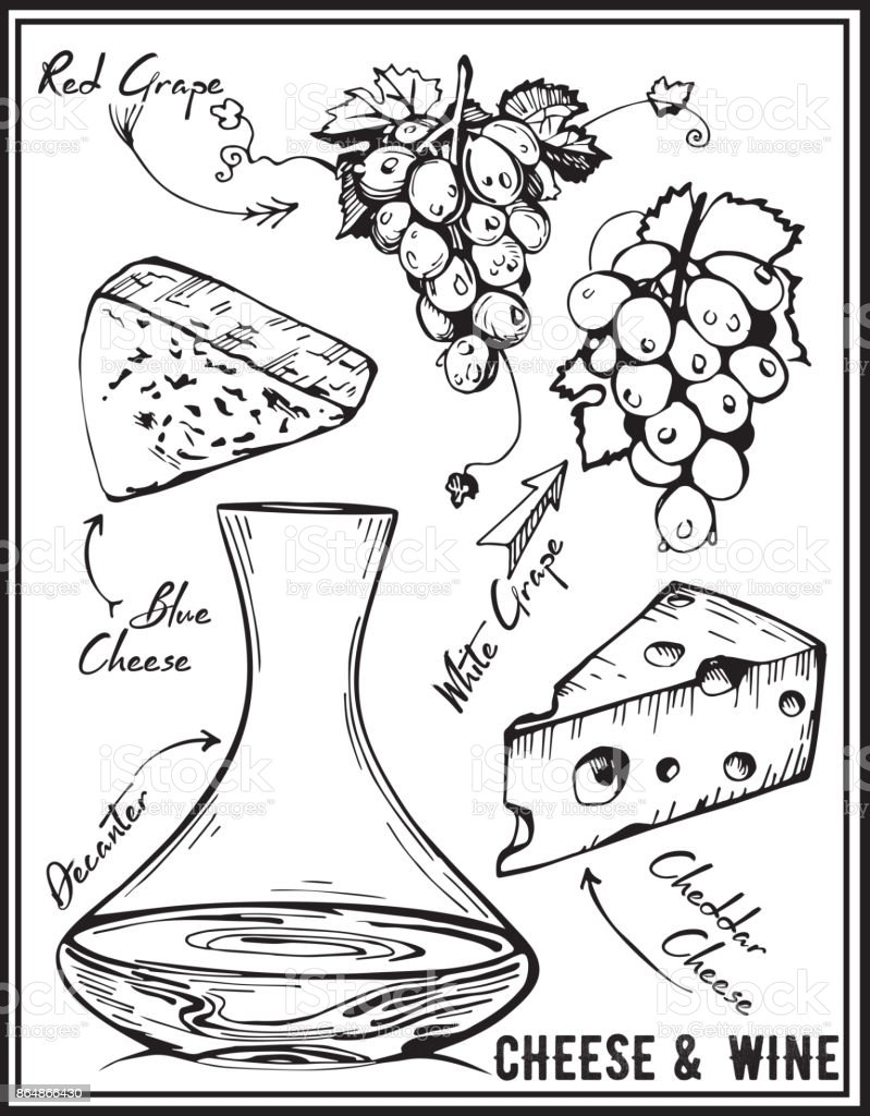 Wine, grapes and cheeses vector image.
