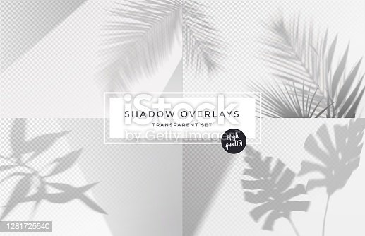 istock Set of shadow background overlays. Realistic Shadow mock up scenes. Transparent shadow of tropical leaves. Vector illustration 1281725540