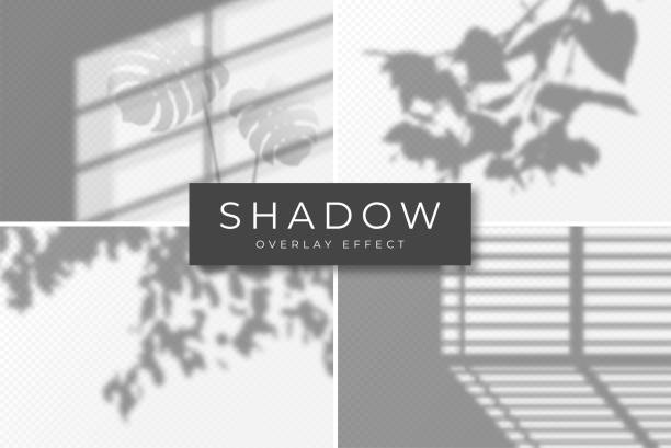set of shadow overlay effects. vector shadow and light overlay effect, natural lighting scene. mockup of transparent shadow from window, monstera leaves and plants - жалюзийный тип stock illustrations
