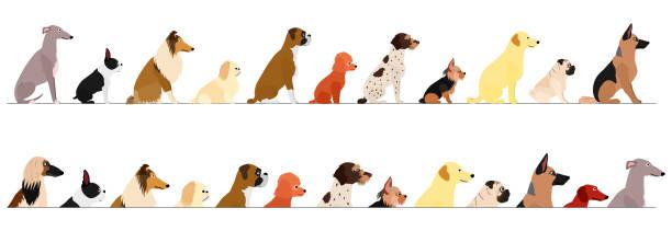 サイドビューのセット小さくて大きな犬の境界線 ベクターアートイラスト