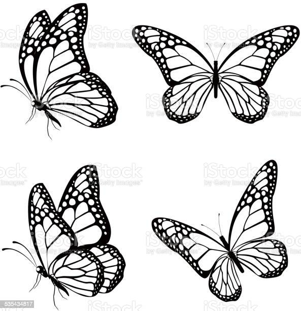 Set of silhouette butterflies isolated for spring vector id535434817?b=1&k=6&m=535434817&s=612x612&h=b2ozkcmqjislbesu0l3zdcupb8smlnfnw6yqn zqpdg=