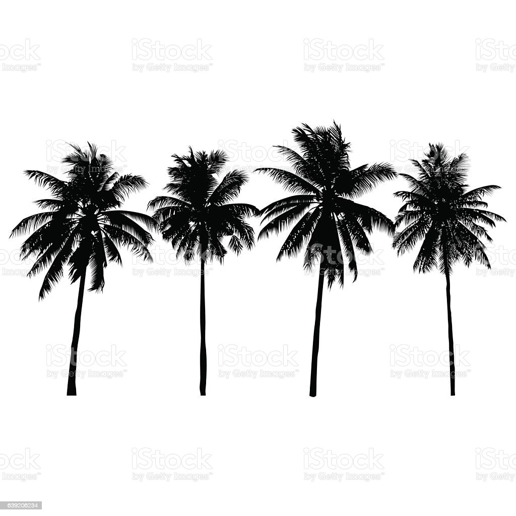 set of silhouette coconut trees, natural sign, vector illustration vector art illustration