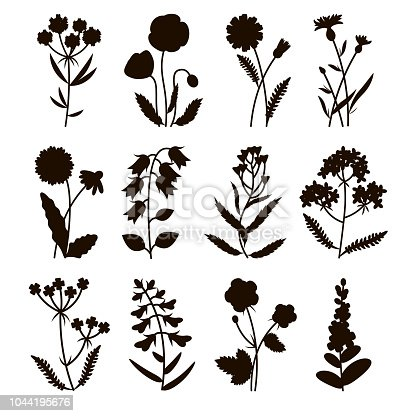 Set of silhouette field flowers including poppy, chamomile, cornflower, lady's purse, buttercup, snapdragon, bell, lavender. Summer flowers. Vector illustration