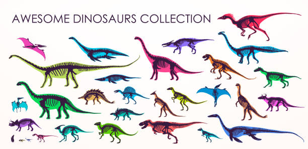set of silhouettes, dino skeletons, dinosaurs, fossils. - dinosaur stock illustrations, clip art, cartoons, & icons